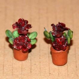 Lundby Krukväxter 2 st med vinröda blommor
